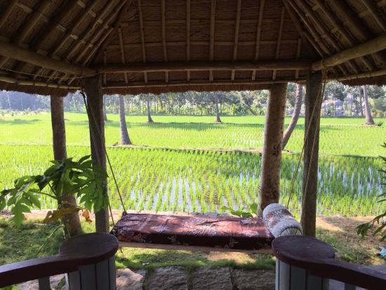 hampi hotel mowgli guest house