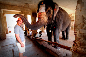 elephant blessing a patron